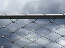 Unconventional Wisdom- A tried-and-true fence