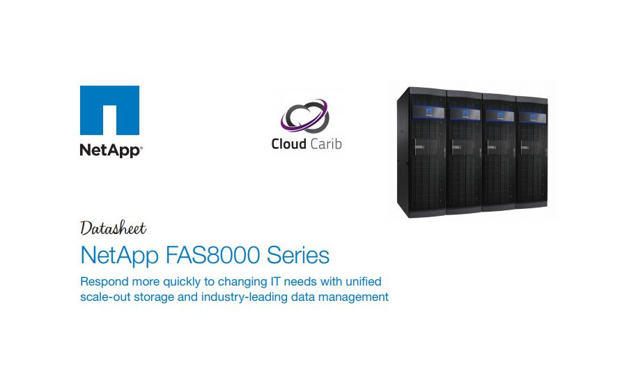 NetApp® FAS8000 Series storage systems